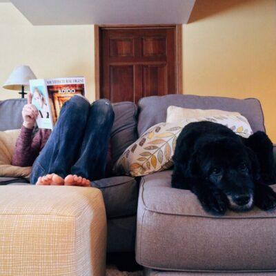 behaaglijk op de bank in een comfortabel huis
